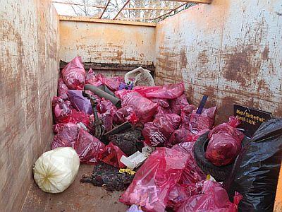 aha-Putzmunter-Müllsammelaktion